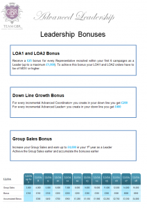 Avon bonuses Pay Plan